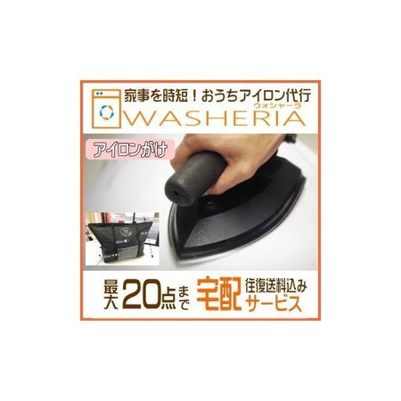 fujicleaning_washeria-iron.jpg